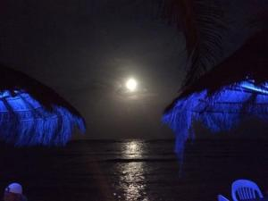 Mexico Moonlight from La Buena Vida